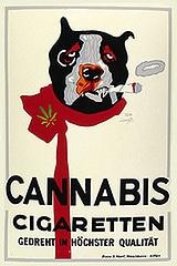 cannabisfumado