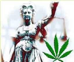 cannabisjusticiera