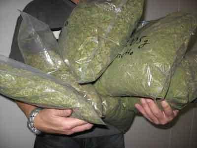 marihuana1vi7