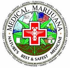 medicmaru