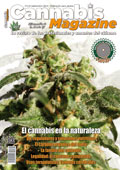 Portada Cannabis Magazine 124