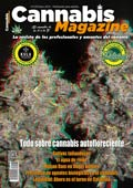 Portada Cannabis Magazine 128