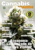 portada138