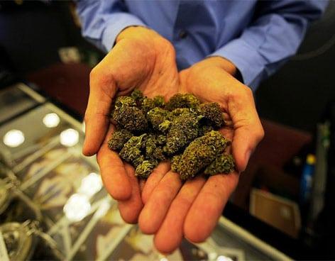 dispensario-marihuana