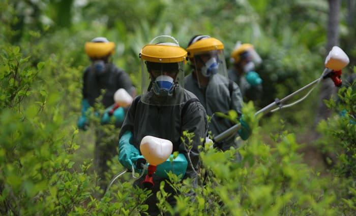 Policía colombiana fumigando cultivos de coca