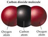 MOLECULA CO2