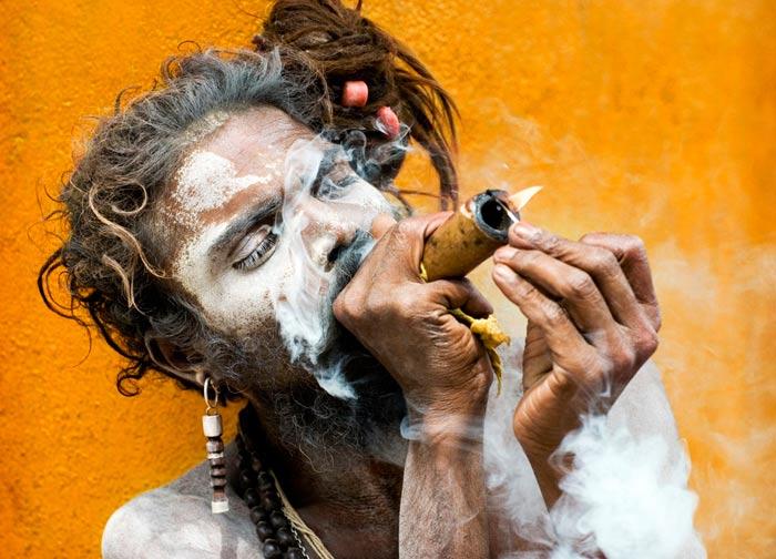 La India: La tierra del cannabis
