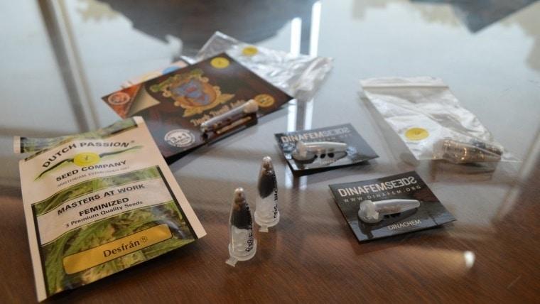 semilllas correo