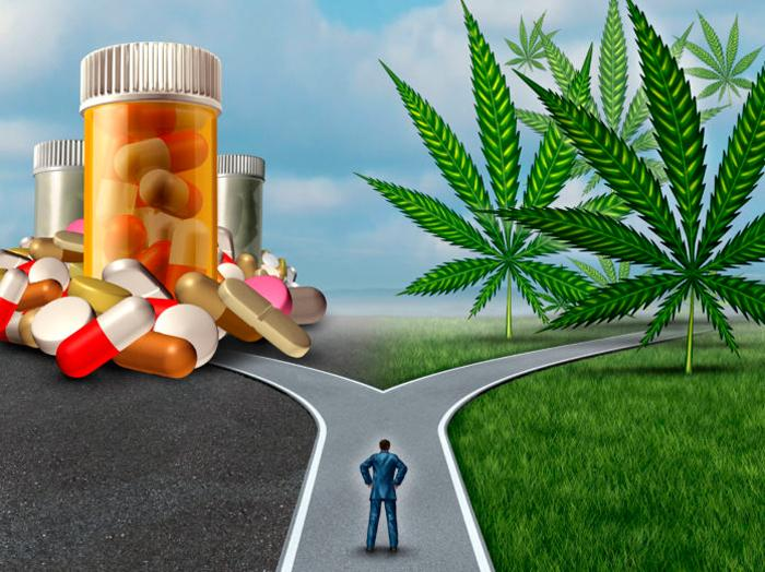 Marihuana vs opiaceos