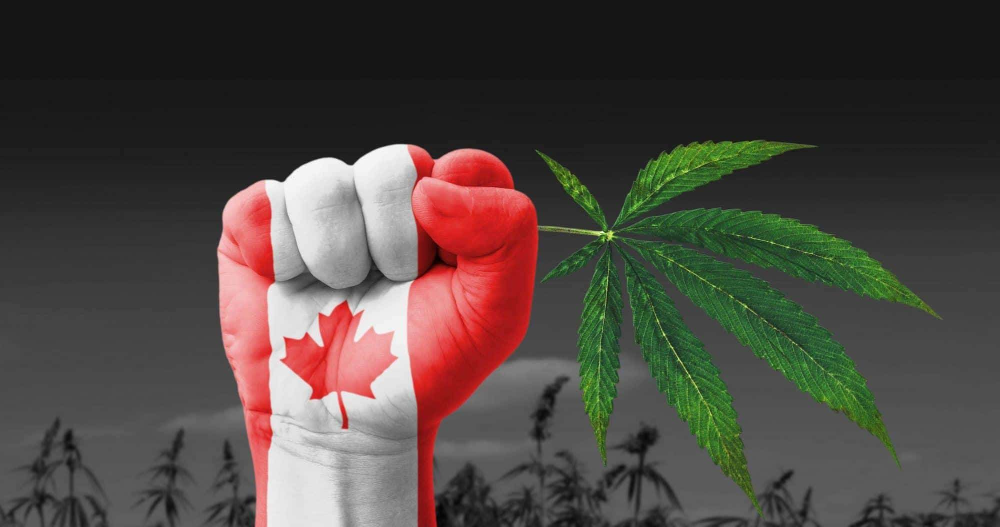 Canada on the way to legalization