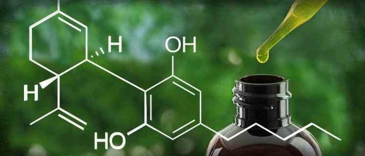 cannabidiol aceite marihuana