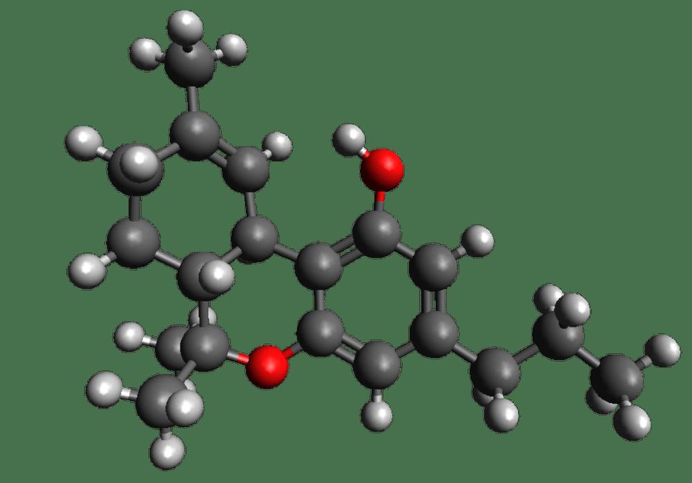 THCV y CBDV, los protagonistas de la nueva ola de cannabinoides para 2019