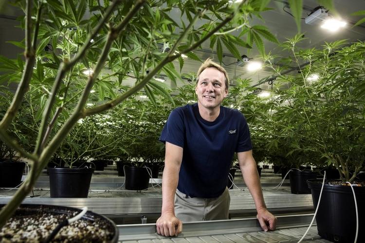 Bruce Linton fundador de Canopy Growth, empresa de cannabis líder en el mundo, que ofrece diferentes marcas y variedades curadas de cannabis en forma de capsulas secas, de gel y aceite. Foto: Chris Roussakis/Bloomberg