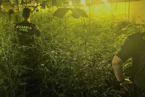 Dos agentes de la Guardia Civil dentro de una 'plantación china' en Badajoz.