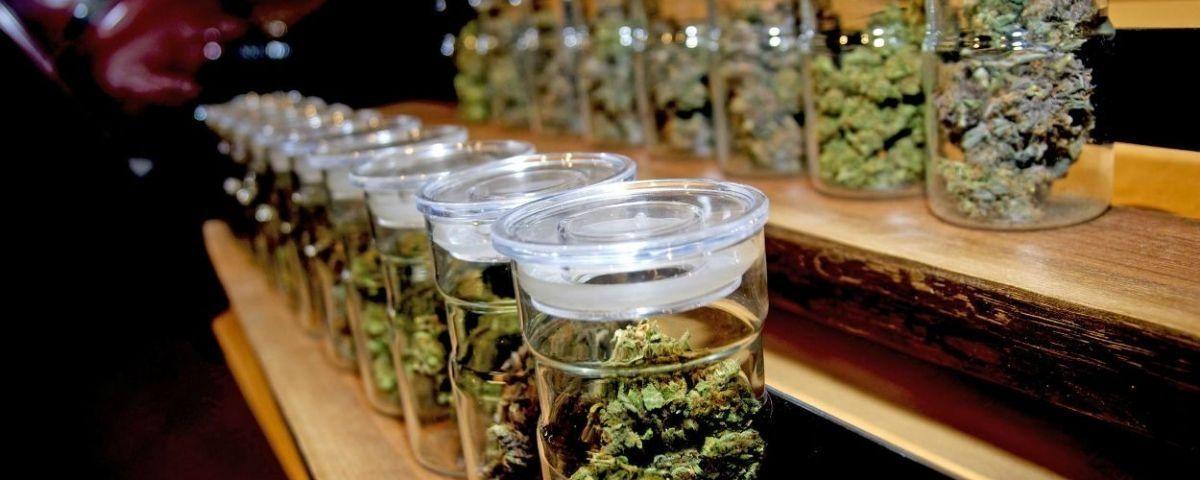 Botes marihuana en un club de cannabis en Barcelona / ARCHIVO