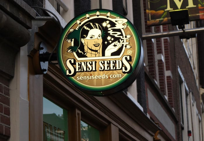 Sensi Seeds Amsterdam