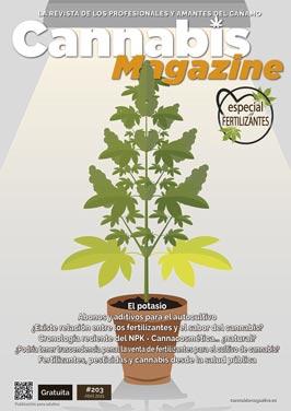 portada 203