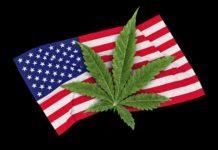 EEUU legaliza
