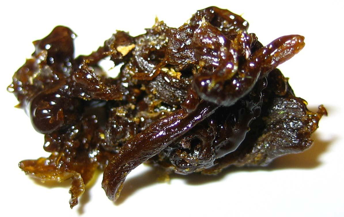Aceite refinado de cannabis