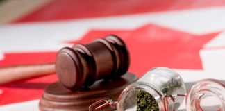selective focus of cannabis in glass jar with wooden gavel on canadian flag, marijuana legalization
