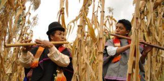 nativos colombianos