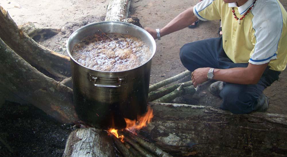 Preparando ayahuasca