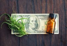 cannabis with cannabidiol (cbd) extract on hundred dollar banknote