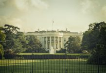 Cross Processed Image of the White House