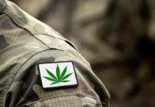 Cannabis leaf on military uniform. Flag with marijuana leaf. Cannabis legalization. Cannabis in Armed Forces.