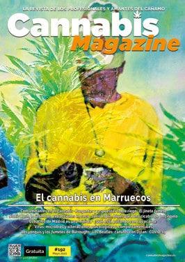 portada191